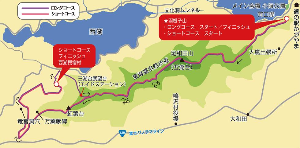 Fujisanroku - 3776D