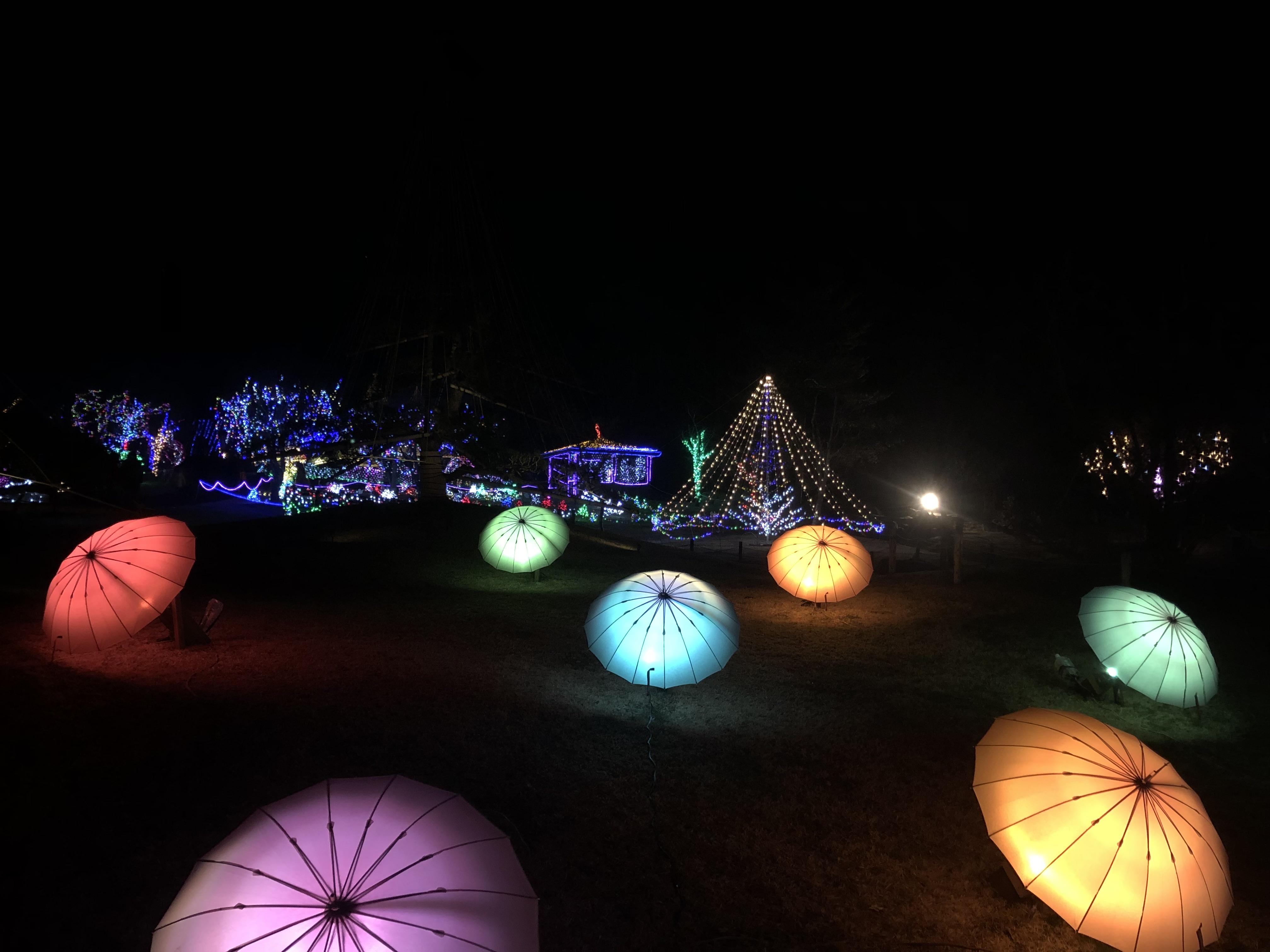 FANTASEUM - Yamanakako art illumination festival - 3776D 1